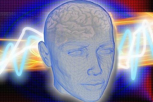 Stressmanagement: een leerproces (in onze hersenen)